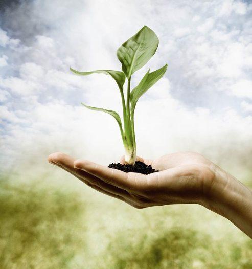 RESERVA: Curso Presencial de Gestión y Marketing para Terapeutas